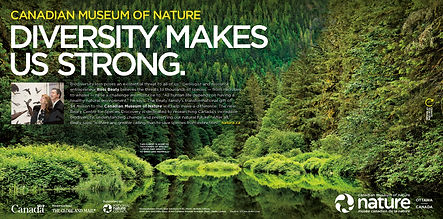 CMN Diversity Globe Ad