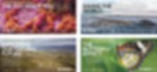 CMN_Globe_ads_website.jpg