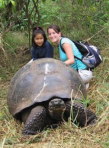 wild Tortoise 2.jpg