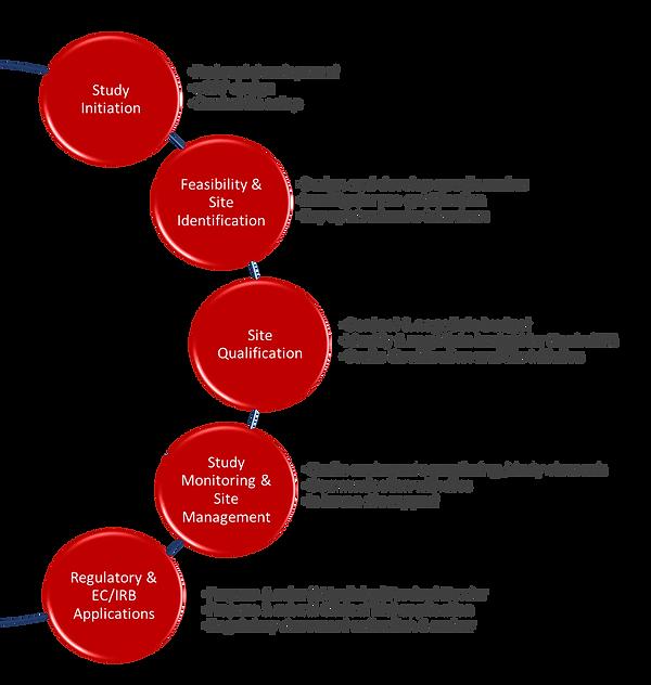 Process Image 2.png
