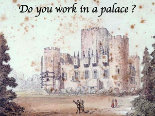 The Palace - A Story of Organisation