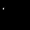 XR Logo Black.png