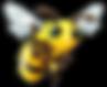 Transparent Bee 2.png