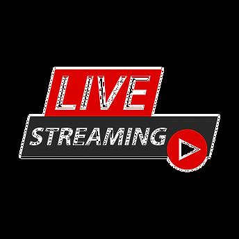 live-streaming-singen_147754-84_edited.p