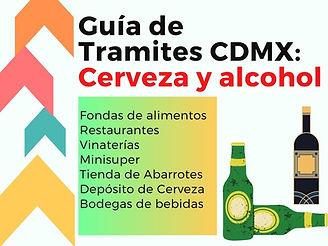 LEAD GUIA GRATIS CERVEZA Y ALCOHOL.jpg