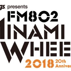 MINAMI WHEEL2018