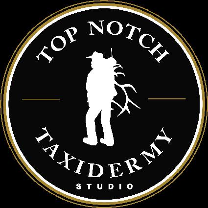 tnt_logo_final_blkbkgd-425x425.png