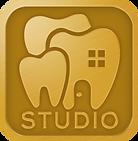 web icon studio.png
