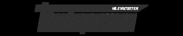 tp.logo.3.png