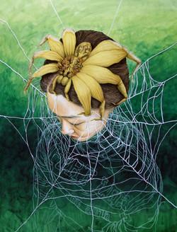 Spider Web I