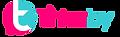 logo-t-blanc.png