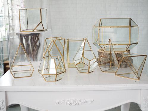 Golden Terrarium