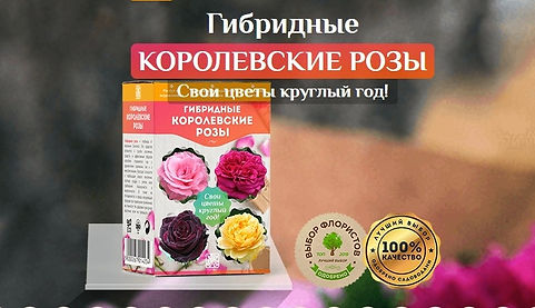 screenshot-home-roses.shoping-deals.com-