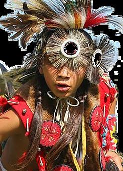 Native American Advocacy Program