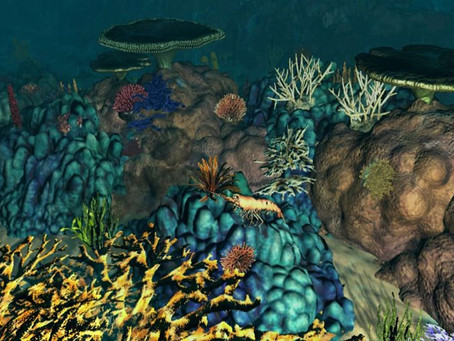 Getting an offer from McKinsey now involves building a reef and saving a plant