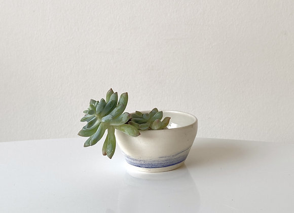 Small Succulent Pot