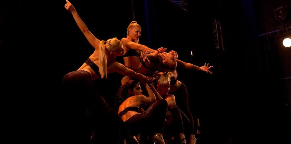Show Palais des Glaces Paris