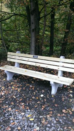 bench on trail.jpg