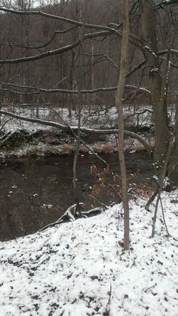 trail in winter.jpg