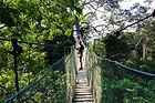 canopy.walk.jpg