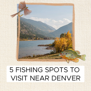 5 Fishing Spots to Check out in the Denver Area