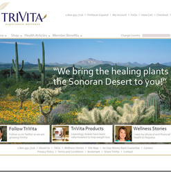 Sonoran Bloom Web Site