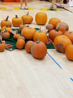 Fall Festival - Pumpkin Walk