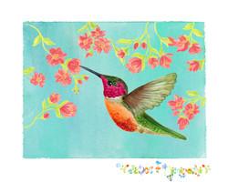 Hummingbird and bossoms