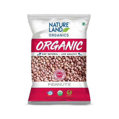 Peanuts - Natureland Organics - 500 gm