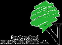 BNN_Logo_Farbe