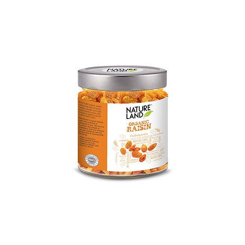 Raisin (Kismis) - Natureland Organics - 250 gm