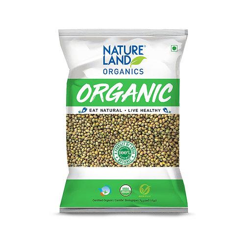 Coriander (Dhaniya) Whole - Natureland Organics - 200 gm