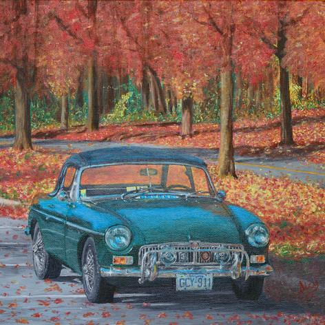 MGB in Autumn