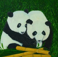 Panda Bears and Bamboo
