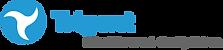 trigent_logo.png