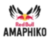 Amaphiko logo.png