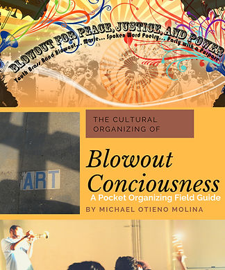 Blowout Consciousness Book Cover.jpg