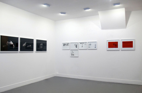Dissidence, solo show, Galerie Valérie Delaunay, Paris, 2015