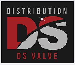Logo DS Valve.jpg