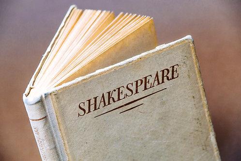 Shakespeare (acting): Merchant of Venice