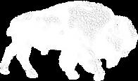 Buffalo.png
