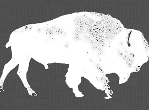 Winter Buffalo.png