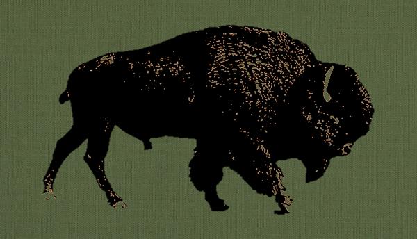 Fall Buffalo.png