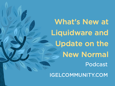 What's New at Liquidware and Update on the New Normal - Podcast