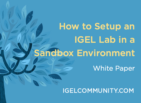 How to Setup an IGEL Lab in a  Sandbox Environment - White Paper