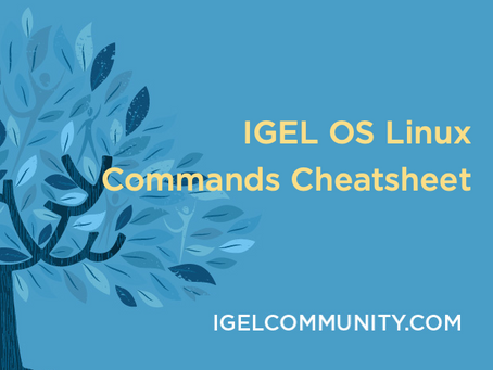 IGEL OS Linux Commands Cheatsheet