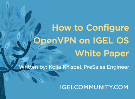 How to Configure OpenVPN on IGEL OS - White Paper