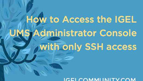 How to Access the IGEL UMS Administrator Console with only SSH access