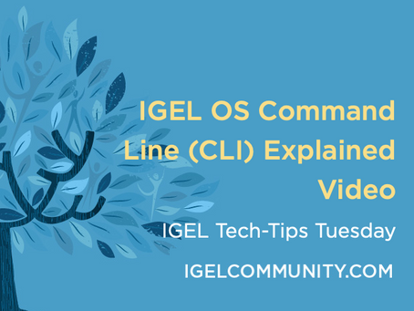 NEW Tech-Tips Tuesday Video - IGEL OS Command Line (CLI) Explained