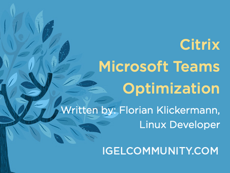 Citrix Microsoft Teams Optimization